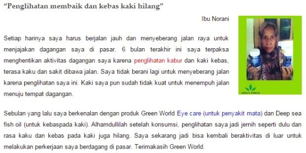 ibu-norani
